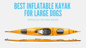10 Best Inflatable Kayak for Large Dogs